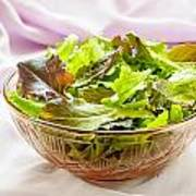 Mixed Salad On Table Poster