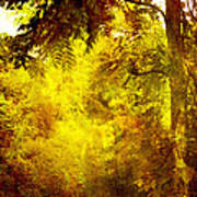 Yellow Forest Poster