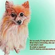 Mizuno - Shelter Sweetie Poster