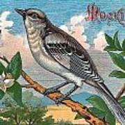 Mocking Bird Poster