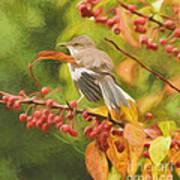 Mockingbird And Berries Poster