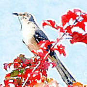 Mockingbird In The Leaves - Watercolor Poster