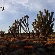 Mojave Desert Joshua Tree With Ravens Poster