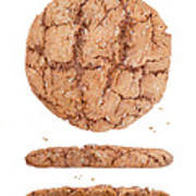 Molasses Cookie Poster
