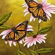Monarchs And Coneflower Poster