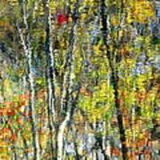 Monet Lives On Poster