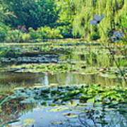 Monet's Water Lily Garden Poster
