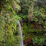 Montagne D'ambre National Park Madagascar 5 Poster