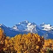 Montana Fall Poster