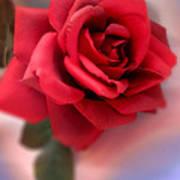Mood Floral  Poster