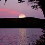 Moon Over Parks Pond Poster