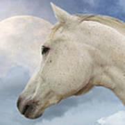 Moon Spirit Poster