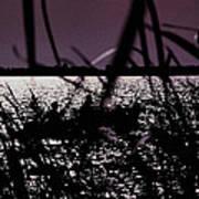Moonlight Fisherman Poster by Christy Usilton