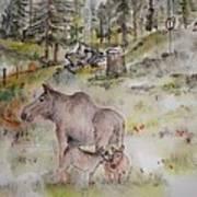 Moose Is Loose Album Poster