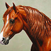 Morgan Horse - Flame - Mirrored Poster