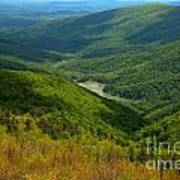 Moormans River Overlook In Spring Poster