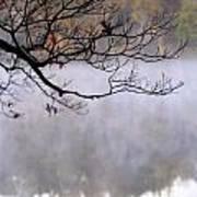 Morning Fog Over Lake Poster