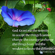 Morning Glory Serenity Prayer Poster