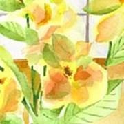 Morning Magnolias Poster