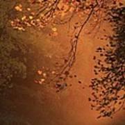 Morning Mist-blue Ridge Parkway Poster
