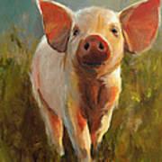 Morning Pig Poster