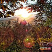 Morning Sunbeams Poster