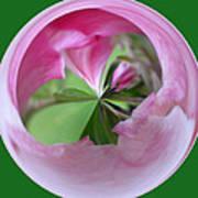 Morphed Art Globe 11 Poster by Rhonda Barrett
