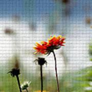 Mosaic Flower Poster