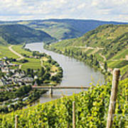 Mosel Area Poster