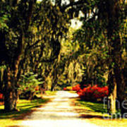 Moss On The Trees At Monks Corner In Charleston Poster
