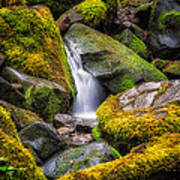 Mossy Waterfall Poster