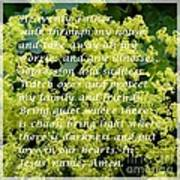 Most Powerful Prayer With Ladies Mantle Poster