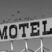 Motel For The Birds Poster by Peter Tellone