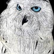 Snow Owl Poster by Tyler Schmeling