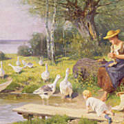 Mother And Child With Geese Poster