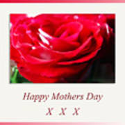 Mothers Day A Red Rose Poster