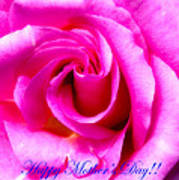 Mother's Day Rose Poster