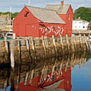 Motif 1 With Reflection Poster