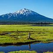 Mount Bachelor And Meadow Poster