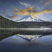 Mount Hood At Trillium One Early Morning Poster