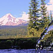 Mount Hood From Buzzard Point Poster by Cari Gesch