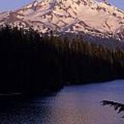 Mount Hood With Kids In Row Boat Silhouetted Poster