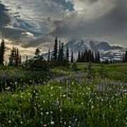 Mount Rainier Meadows Storm Brewing Poster