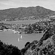 Mount Tam From Angel Island Bw Poster
