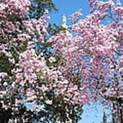 Baltimore's Mount Vernon In Spring Poster
