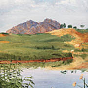 Mountain Landscape With Egret Poster