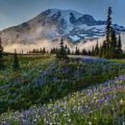Mountain Meadow Serenity Poster