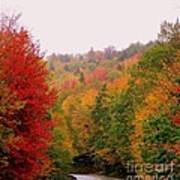 Mountain Road In Fall Poster