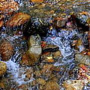 Mountain Stream In Autumn Poster