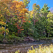 Mountain Stream In Early Autumn Poster